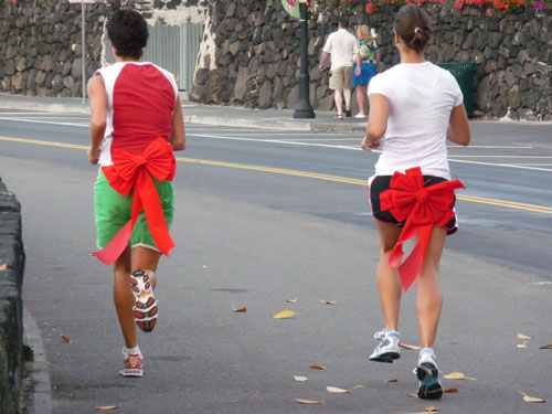 jingle-bell-beach-run-costume-b