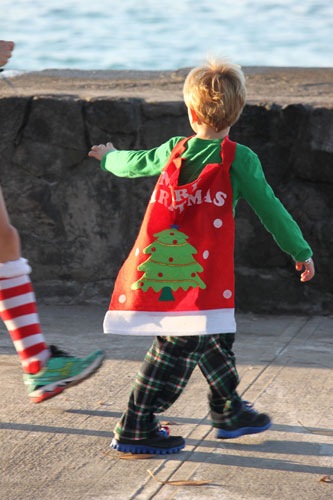 jingle-bell-beach-run-costume-e